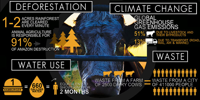 0 cowspiracy