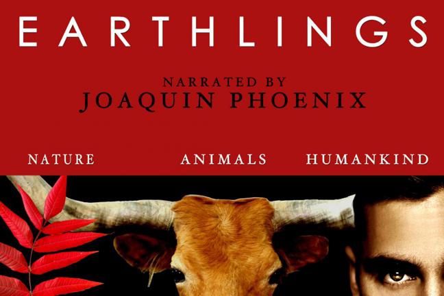 0 earthlings